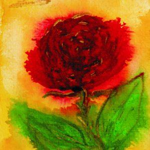 1081-rote-rose