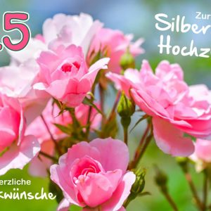 9181-rosa-blueten